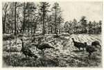 Gordon M. Allen - Band of Brothers - etching/drypoint - 6 x 9.5