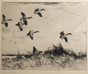 Frank W. Benson - Geese Over a Marsh - etching/drypoint - 7.75 x 9.75