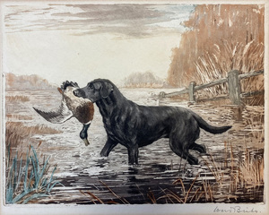 Reuben Ward Binks - Labrador - colored aquatint - 8 x 10