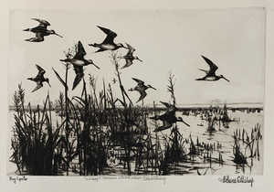 Richard Bishop - Bog Sprites - etching/drypoint - 7.75 x 12