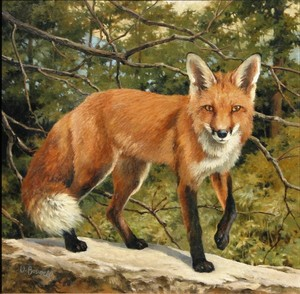 Vivian Boswell - Fox Watching - oil on canvas - 20 x 20