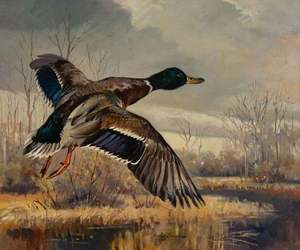 George Browne - Mallard Going Out - oil on canvas - 25 x 30