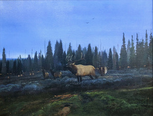 Nicholas Coleman - Bull Elk- Fall In The Air - oil on panel - 24 x 30