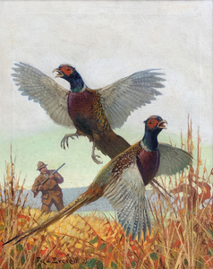 Fred T. Everett - Pheasant Hunting - oil on canvas - 28 x 22