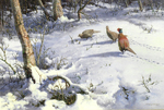Winter Time Pheasants - William Hollywood