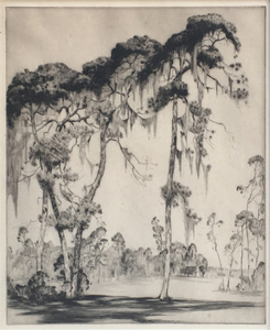 Alfred Hutty - Carolina Pines - etching/drypoint - 13.75 x 11