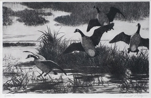 Geese - Aiden L. Ripley (1896-1969)