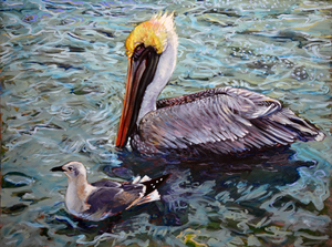 Gull and Pelican - Leslie Shiels