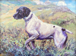 Peggy Watkins - German Short Hair Pointer - oil on canvas - 9 x 12