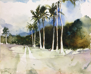 Stephen Scott Young - Coconut Path - watercolor - 11.75 x 14.25
