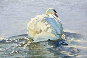 Lisa Gleim - Swan Song