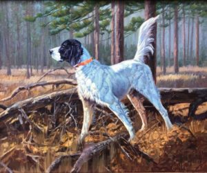 Julie Jeppsen - English Setter