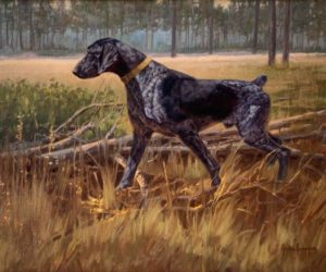 Julie Jeppsen - German Shorthaired Pointer