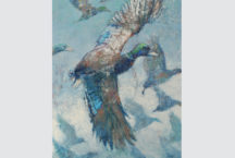 Southern Sporting Fowl on view in Charleston, Sept 3rd-24th