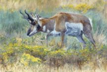 Fall Colors and Big Game Rituals – On view in Beaver Creek, Oct. 19th – Oct. 30th